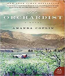 منظره زیبایی از کوه و باغ و چند کلبه بر روی جلد کتاب
