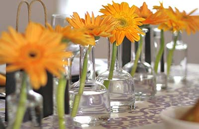 هفت بطری شیشهای در شکلهای مختلف که در هر یک، یک شاخه گل نارنجی قرار گرفته است